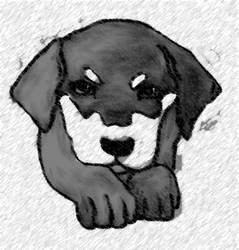Dog by SlayersStronghold