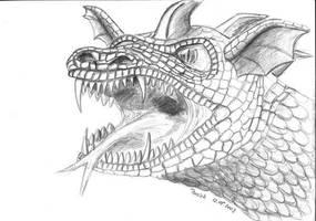 Dragon by parsek76