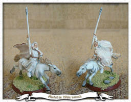 Gandalf the White Mounted by parsek76