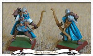 High Elf Shadow Warrior 1 by parsek76