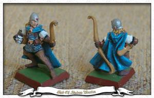 High Elf Shadow Warrior 2 by parsek76
