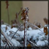 Frozen 1 by parsek76