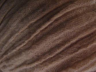 Dark Gauze Fabric Texture by FantasyStock