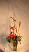 Tropical Flower Arrangement 2 by FantasyStock