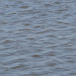 Seamless Pond Water Texture by FantasyStock