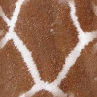 Seamless Giraffe Fur Texture by FantasyStock