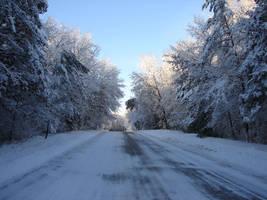Wisconsin Woods Winter Road 2 by FantasyStock