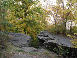Rocky Forest Background 37 by FantasyStock