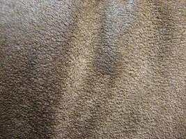 Worn Shoe Suede Texture by FantasyStock