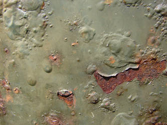 Metal Rust Texture 40 by FantasyStock