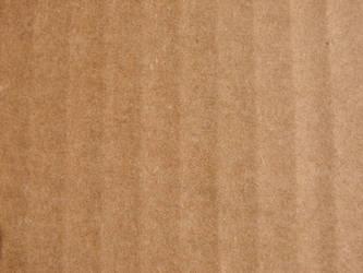 Cardboard Texture by FantasyStock