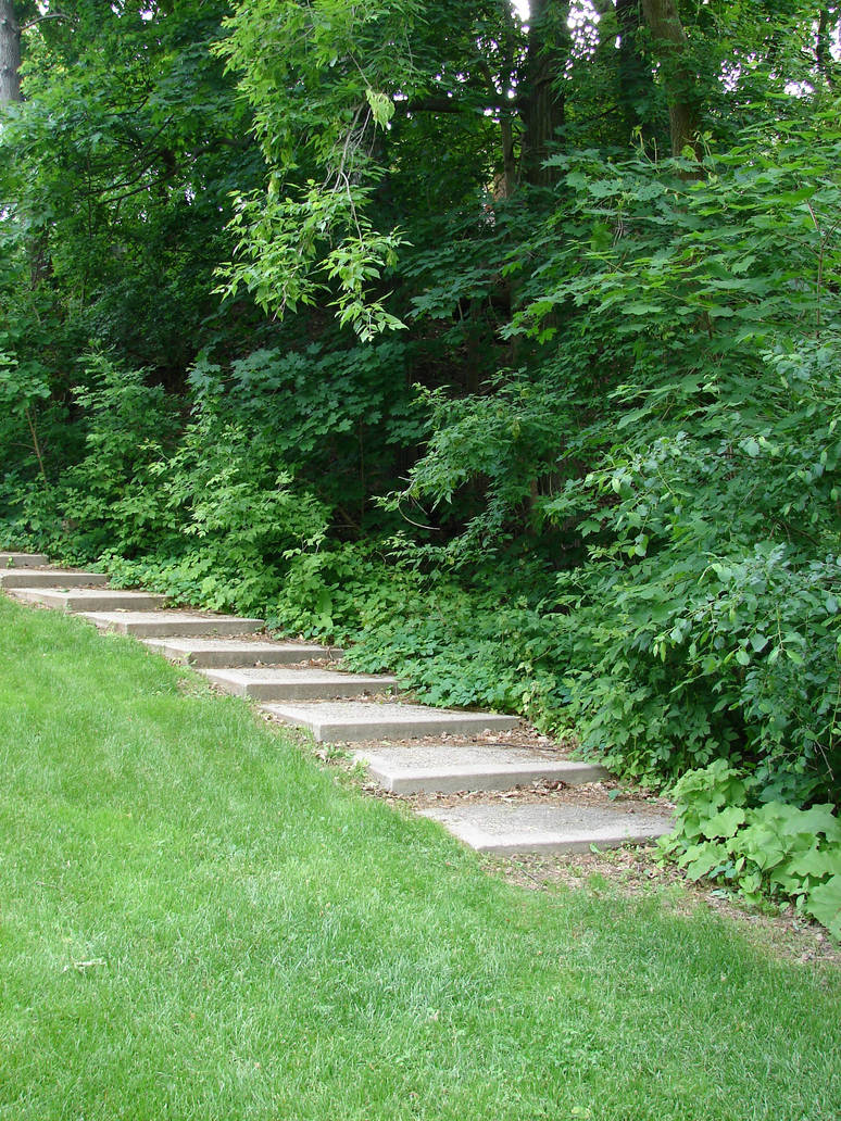 Stock Stairs Landscape 2 by FantasyStock