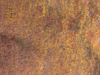 Metal Rust Texture 43 by FantasyStock