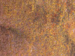 Metal Rust Texture 43 by FantasyStock