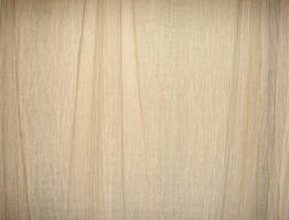 Ivory Curtain Cloth Texture by FantasyStock