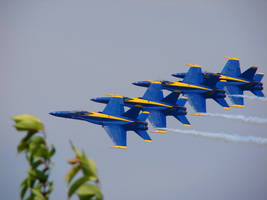 Blue Angels Air Show Flight 09 by FantasyStock