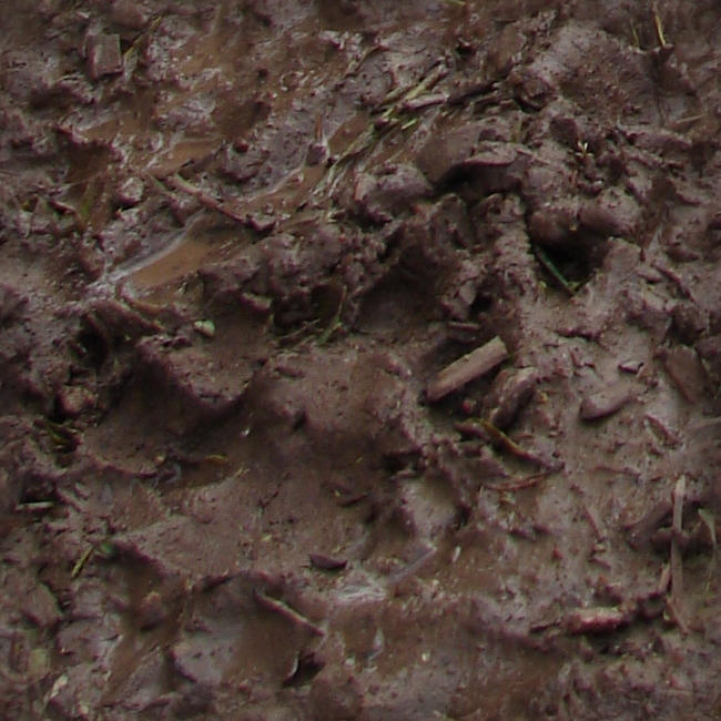Seamless Wet Mud Texture by FantasyStock