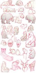Zoo sketch dump by KendallHaleArt