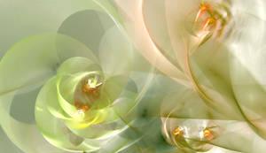 delicate wine vine by GLO-HE