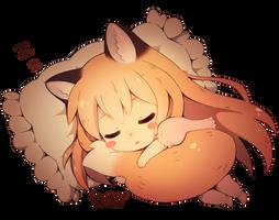 Sleeping Fox by DAV-19