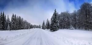 Winter Tale by P11K
