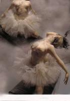 The last dance Swan Lake by cdlitestudio