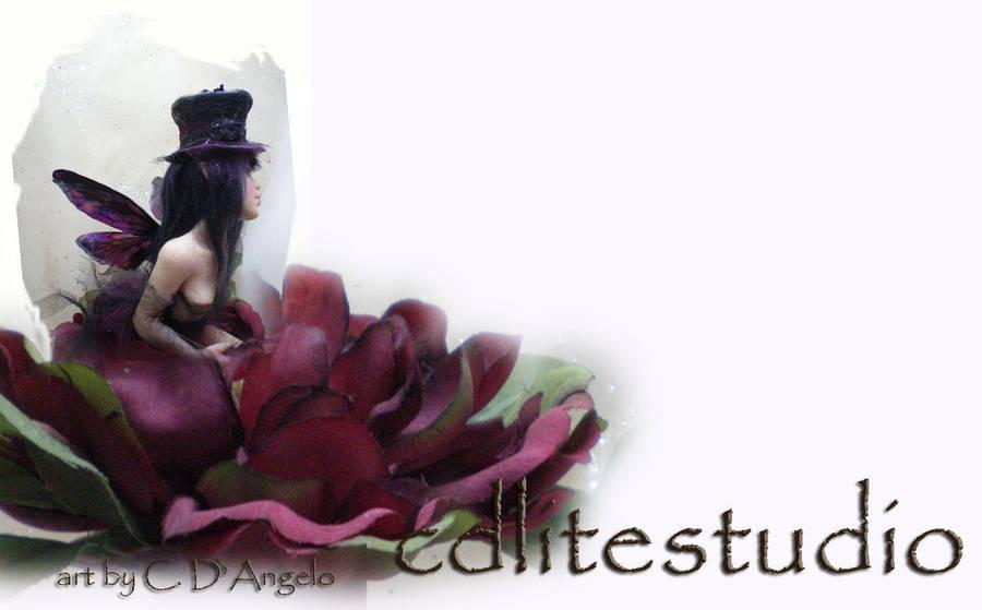cdlitestudio's Profile Picture