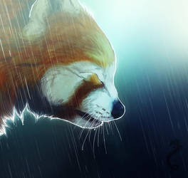 Crying In The Rain by CobraVenom