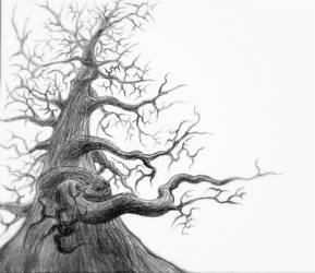 a sort of tree by Weissglut