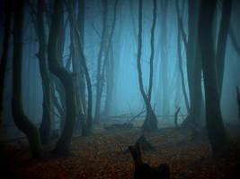 Mist of Oblivion by Weissglut