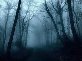 Breath Of Fog by Weissglut