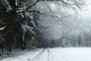 A Little Bit Of Winter by Weissglut