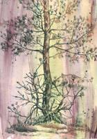 Pine by MorMoraIG