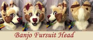 Banjo Fursuit head by GoldenCat22