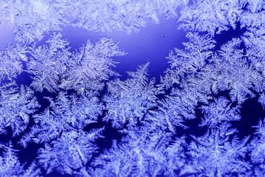Hello winter by fotografka