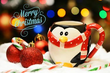 Merry Christmas ! by fotografka