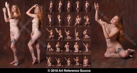 Stock:  Allysia 25 Gentle, Feminine, Elegant Nudes by ArtReferenceSource