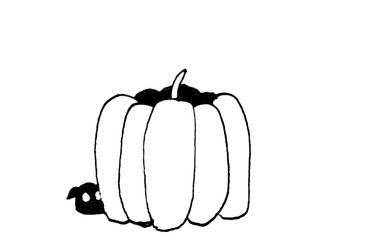Pumpkin by lrkis