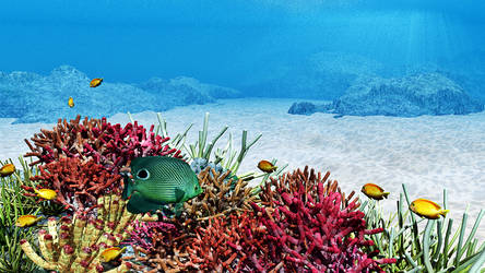 CoralReef by TWare1