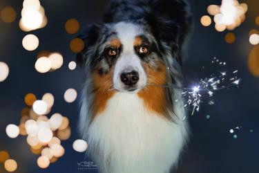 Happy New Year ! by KristynaKvapilova