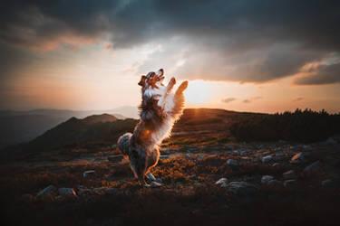 Dancing in the sunset by KristynaKvapilova
