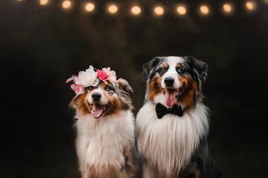 Wedding guests by KristynaKvapilova