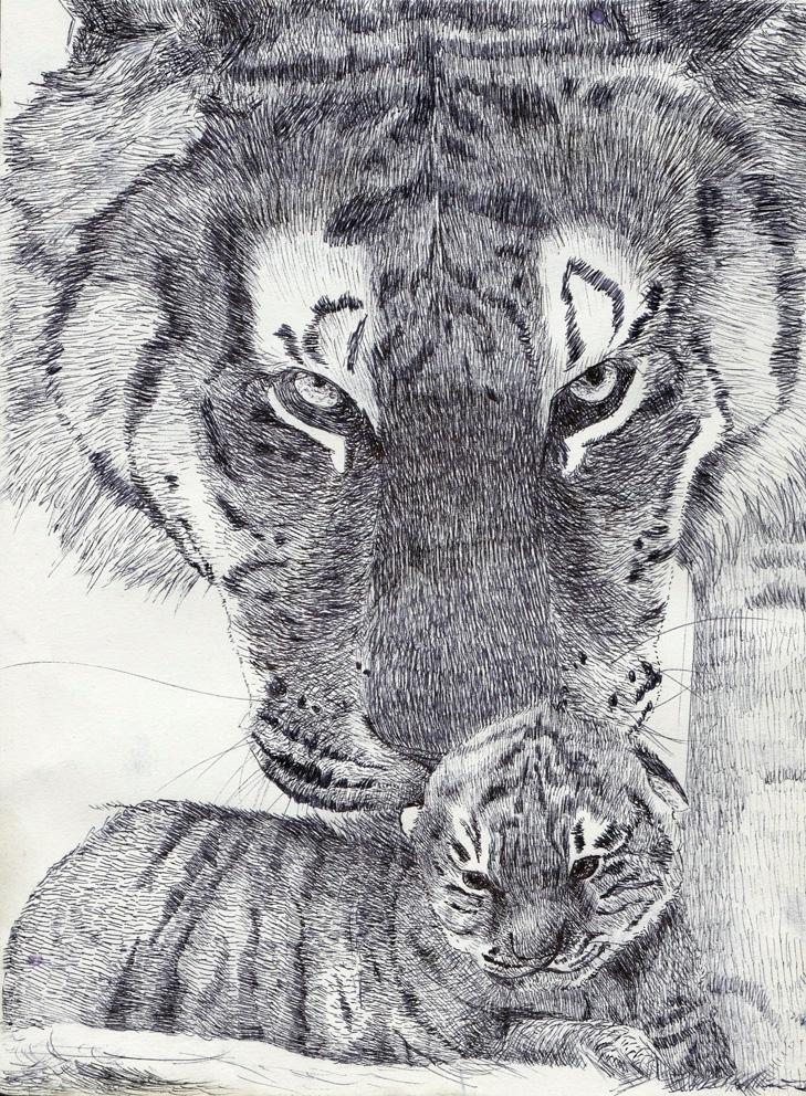 Serie Di Felini (13) Tigre by Ewlor