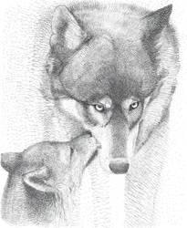 Predatori e cuccioli, Lupo by Ewlor
