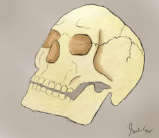 Skull by BS4711
