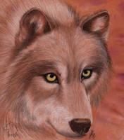 Sepia Wolf by Dark-Lioncourt