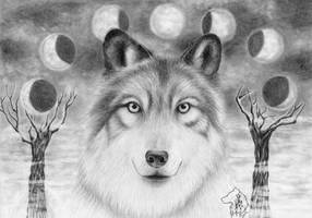 November Wolf by Dark-Lioncourt