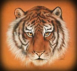 The Syberian King - tiger portrait by Dark-Lioncourt