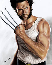 Colored Pencil Drawing: Hugh Jackman as Wolverine by JasminaSusak