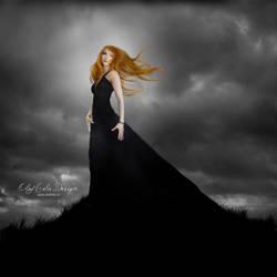 Black widow by oloferla